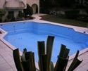 תמונה של גילברט בריכות שחייה